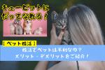 【ペット婚活】婚活でペットは不利なの?メリット・デメリットをご紹介!